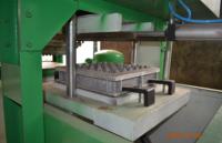 Линия по производству лотков из бумажных отходов